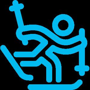 Logo ski-fond