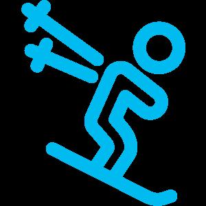 Logo sports-alpins